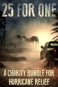 25 For One: A Charity Bundle For Hurricane Relief in TX, FL, PR, and USVI
